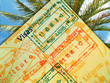 passport and palm tree