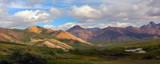 denali national park-