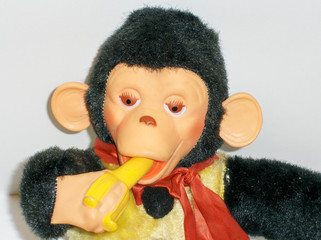 monkey and his banana