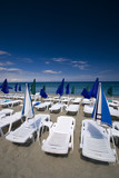 summer seaview with deck-chairs and umbrellas poster