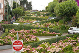 lombard street, the crookedest street in the world poster
