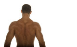 body builder back poster
