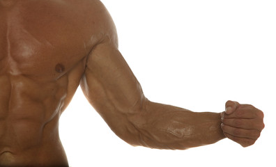 body builder arm