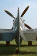 spitfire tail