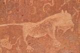 rock engravings poster