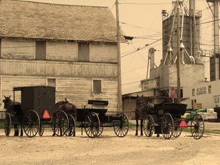 buggies in sepia