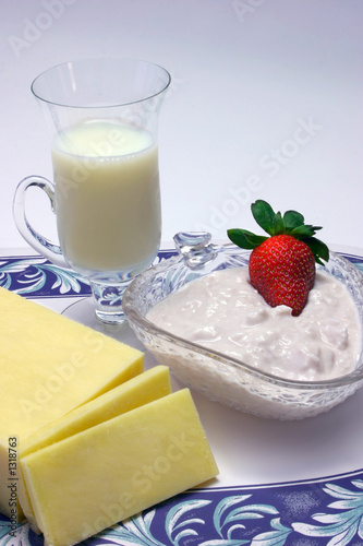 low fat dairy food group