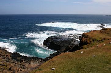 nobbies and seal rocks