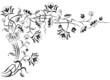 element for design, corner flower
