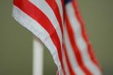 usa flag detail poster