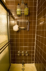 retro bathroom shower