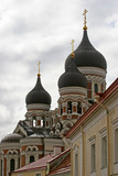 tallinn cathedral domes poster