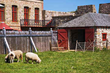 louisbourg farm
