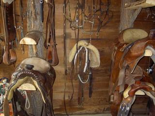 matériel pour l'équitation