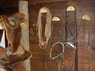 matériel pour cheval