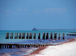 naples pier and beach