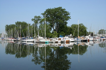marina with reflection