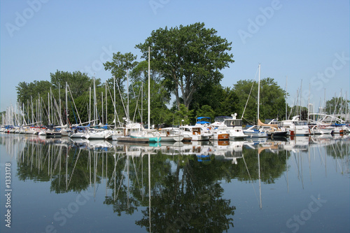 marina with reflection
