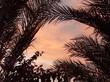 Leinwanddruck Bild ciel crépusculaire