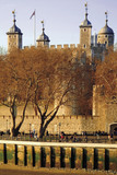 embankment, tower of london, london, england, poster