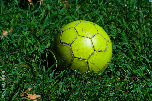 old ball on the grass-plot