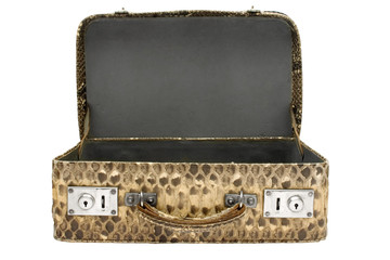 snakeskin bag w/ path