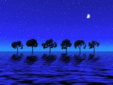 blue night . trees poster