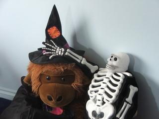 halloween fun outfits.