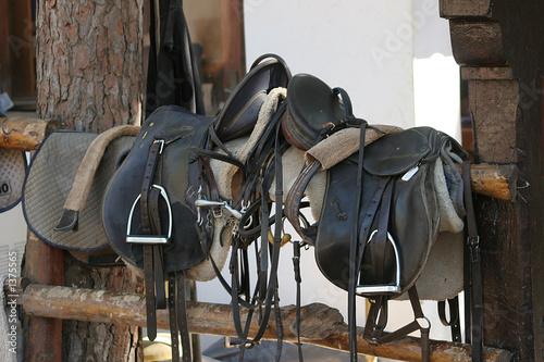 saddles - 1375565