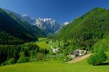 Fototapety spring in alpine valley