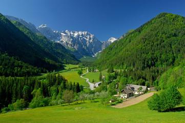 spring in alpine valley