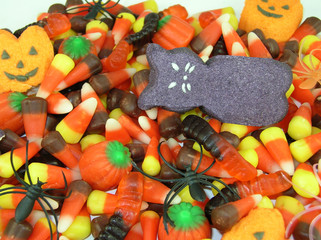 halloween candy assortment