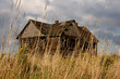abandoned house behind grass