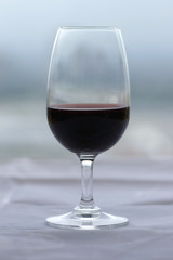 glass of port wine against muted green/grey