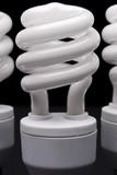 spiral bulbs poster