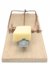 mousetrap (front view)