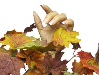 fall season manicure