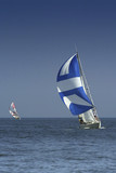 sailing. the winner and losed poster