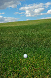 golf ball im the rough poster