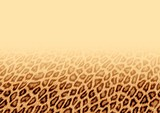 leopard fur background poster