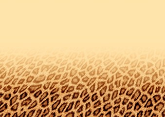 leopard fur background