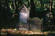 jewish cemetery (3)