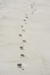 supren im sand