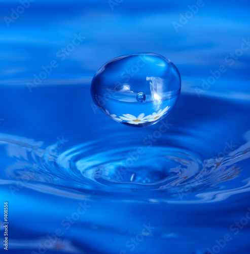 waterdrop with reflection of flowers