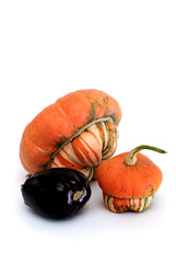 eggplant and pumpkins