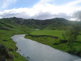 rivière serpentant au milieu de prairies