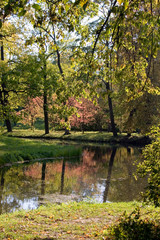the river in autumn park