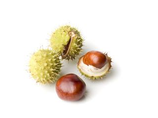 four chestnuts
