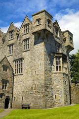 irish castel