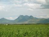 montagnes, champ de canne à sucre et nuages poster